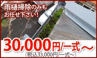 雨樋掃除33000円/一式~