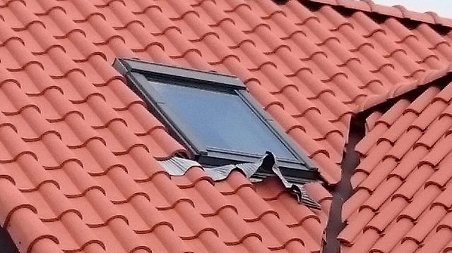 天窓が付いている屋根面のズーム写真