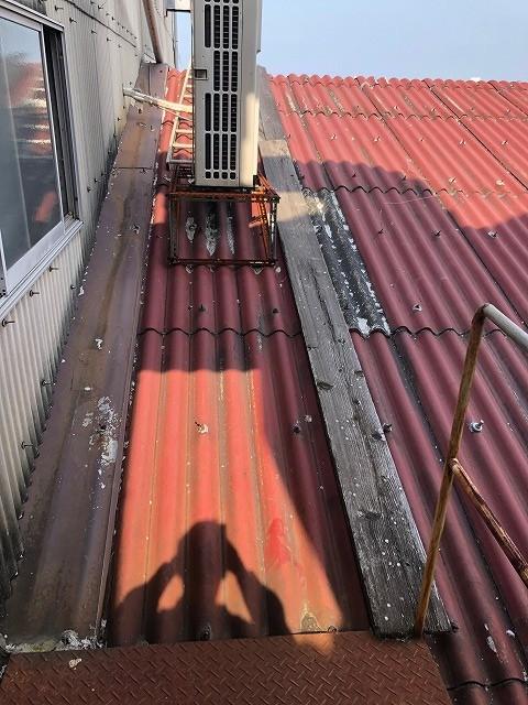 大波スレート屋根のフックボルトを写した写真