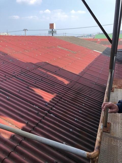 タオル繊維染色工場の屋根に上がった時の写真
