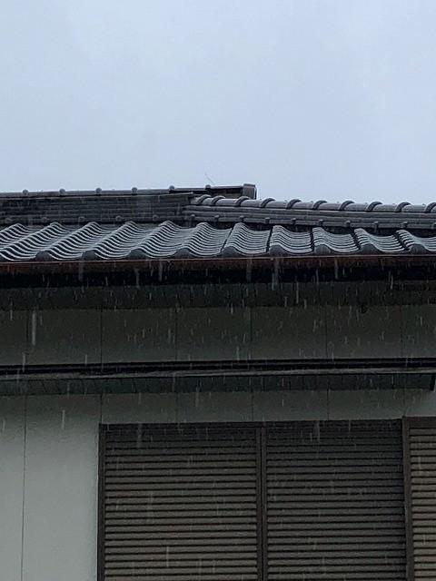 二階の屋根棟部の写真